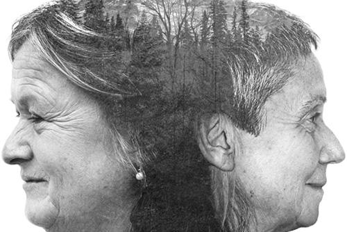 Las dos Ursulas. Galería 22